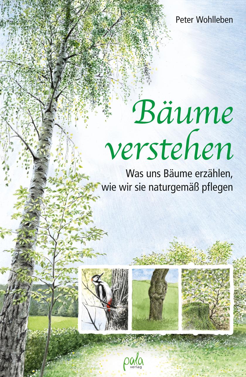 9783895666881 Bäume verstehen